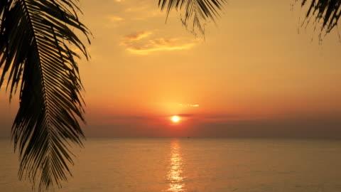 sunset beach sea tropical island orange sky silhouette palm - isola video stock e b–roll