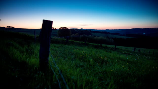 CRANE UP: Sunset Field video