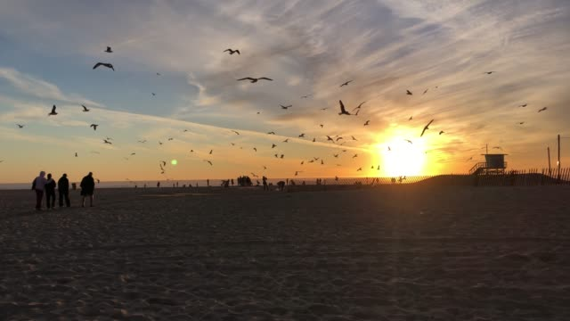 Sunset from Santa Monica Beach in California video