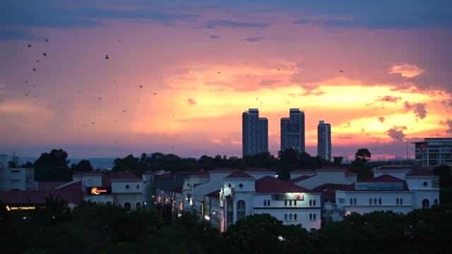 sunset in damansara , petaling jaya tropicana climate with birds flying around