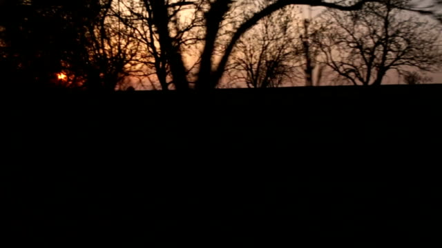 Sunset in spring video