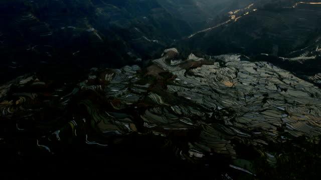 zachód słońca w szeregową pola - taras ryżowy filmów i materiałów b-roll