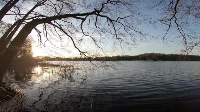 vídeos de stock e filmes b-roll de sunset on a lake under trees - margem do lago