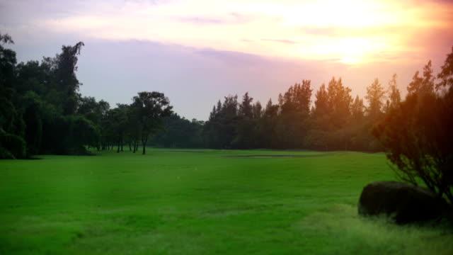 Sunset on golf field video
