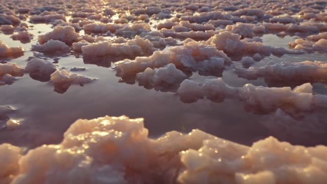 sunset on salty lake. masses of salt crystals in lake water. sun and its beams reflecting on water. steadicam shot, uhd - salt video stock e b–roll