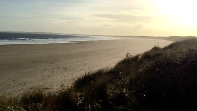 Sunset over a perfect sandy beach, waving grass, waves crash video