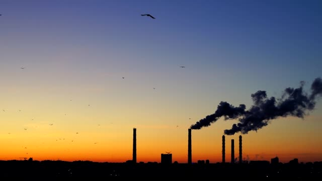 Sunset over a Smoking thermal power plant. The sun moves over the cooling towers and chimneys. Thick smoke rises high.. Flying birds on sunset background. Birds fly South