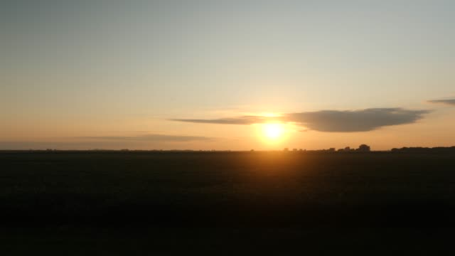 Sunset over a soy field on a farm video
