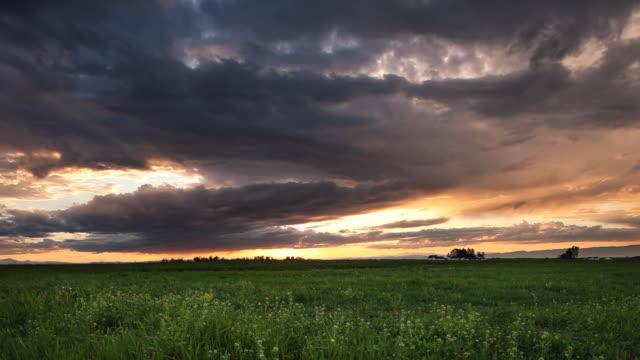 vídeos de stock e filmes b-roll de pôr do sol sobre o campo de cevada. montana - rancho quinta
