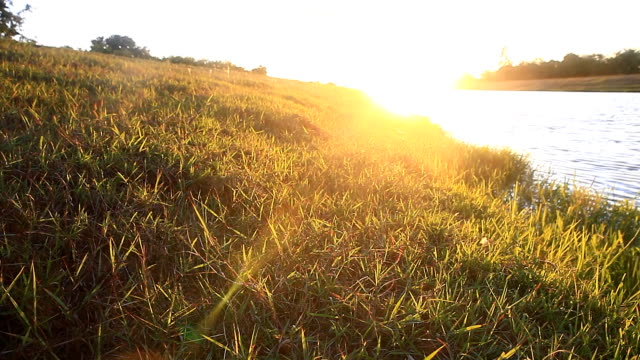 Sunset over river in Thailand. - vídeo