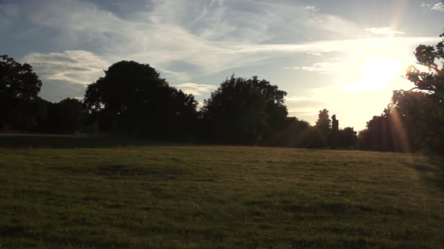tramonto sulla campagna inglese - inquadratura fissa video stock e b–roll