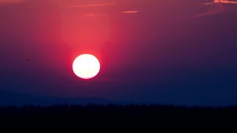 vídeos de stock e filmes b-roll de sunset over the trees and clouds - anoitecer