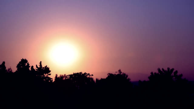 TIMELAPSE: Sunset over trees video
