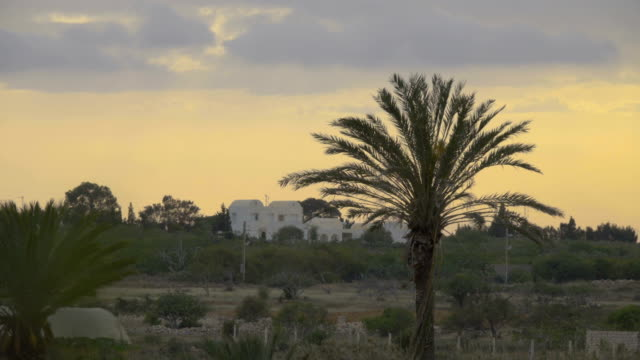 Sunset over white houses and palms . Silhouette of a palm tree over the sunset in the Africa.