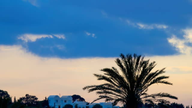 Sunset over white houses and palms . Silhouette of a palm tree over the sunset. Time Lapse. Timelapse.