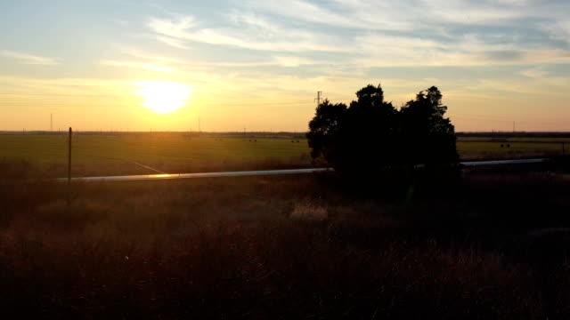 alanında gün batımı panorama - dalları ile drone ateş - sale stok videoları ve detay görüntü çekimi