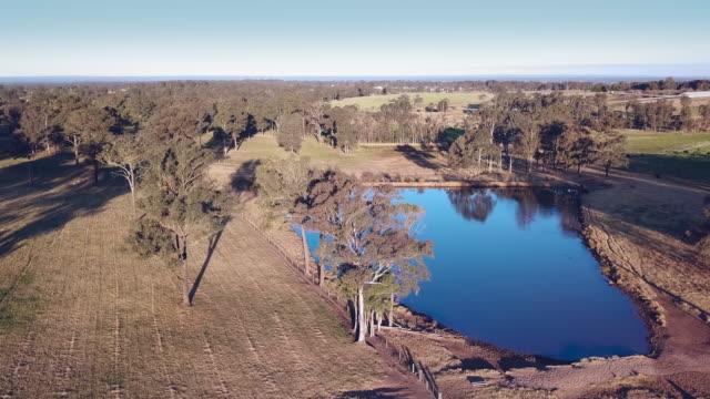 vídeos y material grabado en eventos de stock de sombras de puesta de sol en una escena pastoral en el arbusto australiano - charca