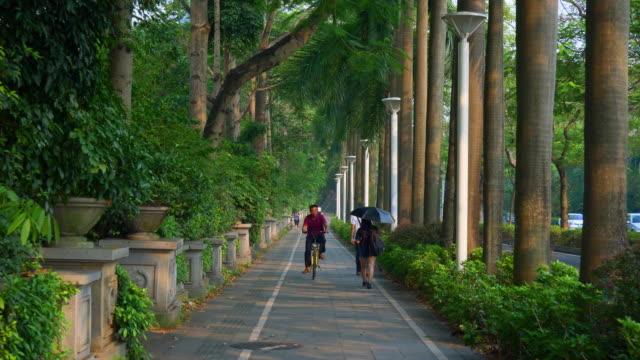 vídeos de stock, filmes e b-roll de cidade de shenzhen do sol caminhando china panorama 4k de calçada - boutique