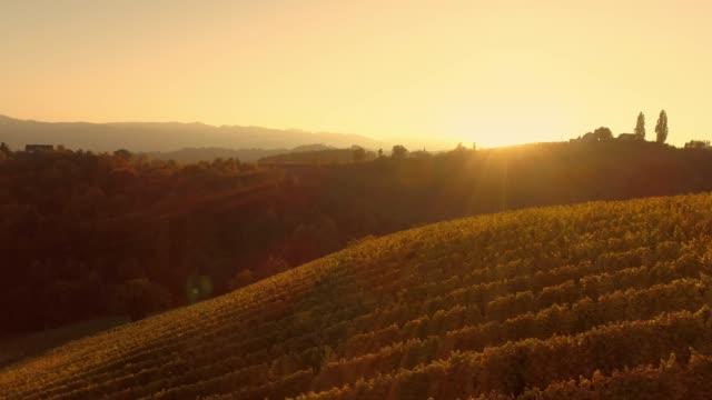 ws parlayan günbatımı üzerinde sakin, pastoral kırsal bağ hillside, spicnik, slovenya - styria stok videoları ve detay görüntü çekimi