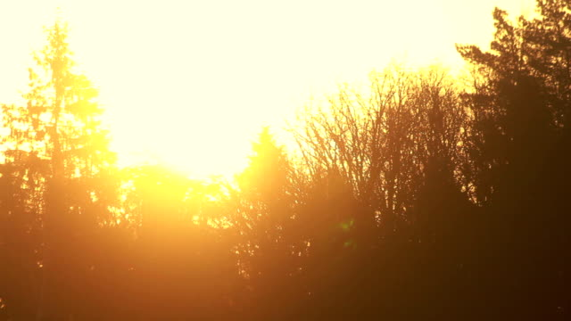 Sunset sky. Orange sky at sunset. Orange nature background video