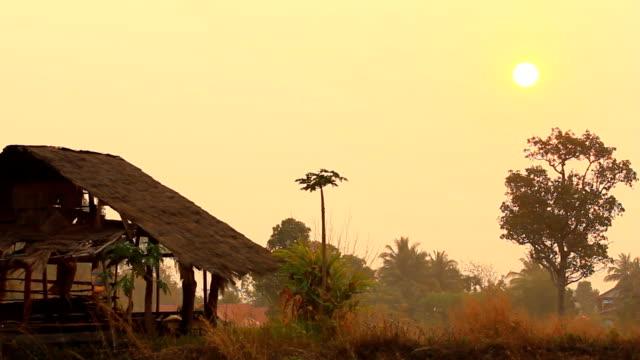 tramonto/sunrise sulla collina. - telecomando background video stock e b–roll