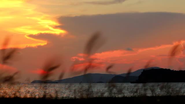 sunset / sunrise over the ocean. video