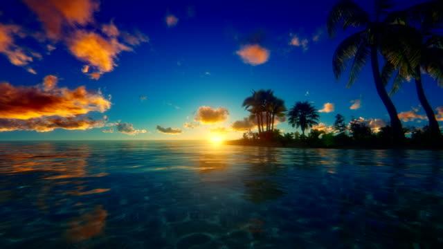 sunset/na wschód słońca nad tropikalnej wyspie - palm tree filmów i materiałów b-roll