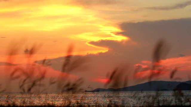 sunset / sunrise video