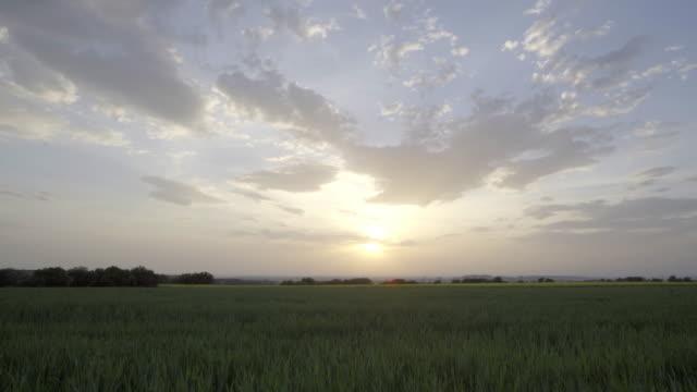 sunset timelapse 1 - lleida стоковые видео и кадры b-roll