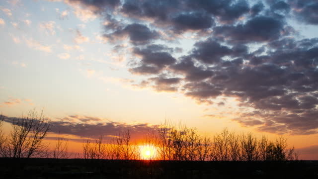 Sunset timelapse Spring Nature. Sunset sunset to night time lapse stock videos & royalty-free footage