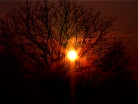 stockvideo's en b-roll-footage met sunset - natuurgrond