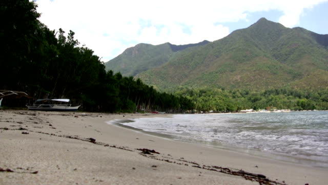 (Perfect Loop) Sun-soaked Beach Break Mountain video