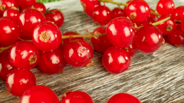 super close macro of a redcurrants on a wooden table. - ribes rosso video stock e b–roll