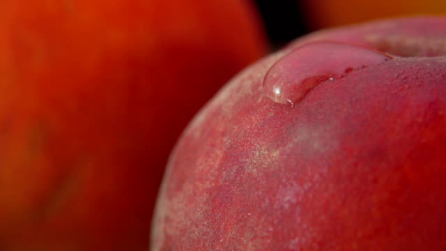 super close up of the red peach surface with a drop of water - brzoskwinia owoc filmów i materiałów b-roll