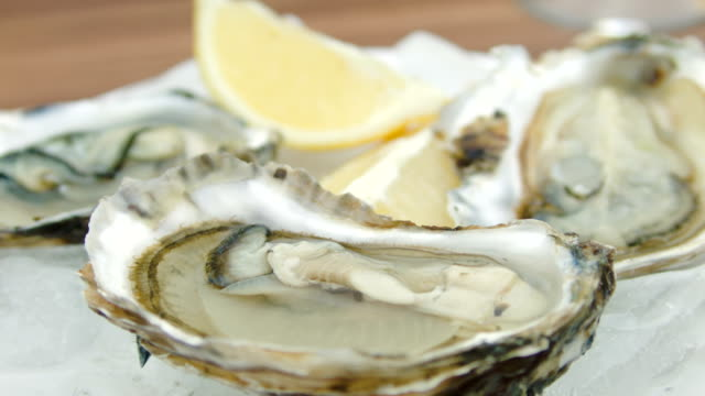 Super close-up of fresh oysters on a white plate video