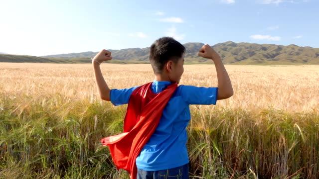 super hero standing beside wheat fields - napinać mięśnie filmów i materiałów b-roll