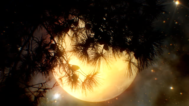 Super Moon and tree (loopable) video