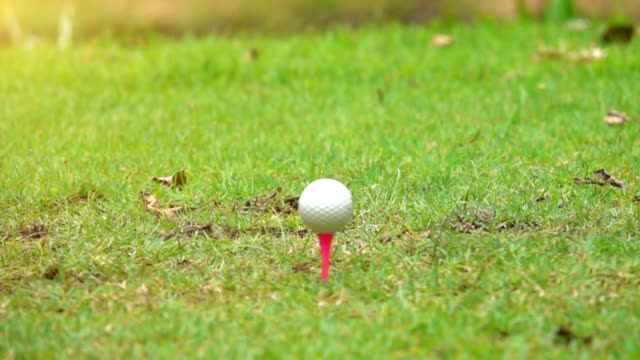 Super slow motion Golfer hitting ball on tee off area in beautiful golf course video