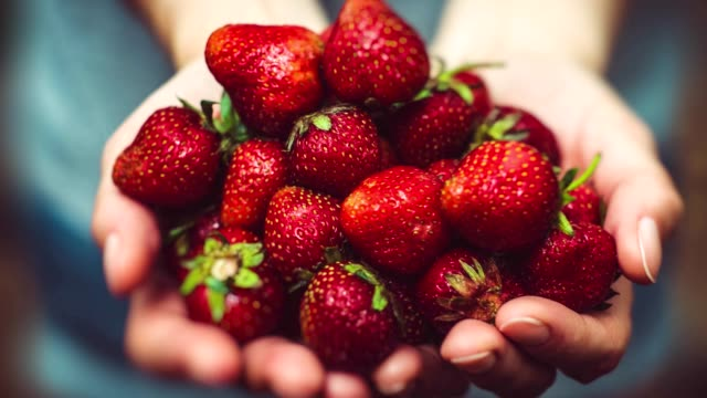 vídeos de stock e filmes b-roll de super slow motion hands holding strawberries 4k - strawberry