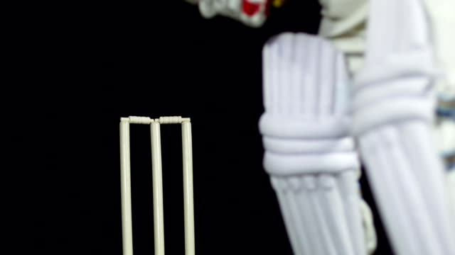 Super Slow Motion HD - Bowled out, Cricket (Close up) video