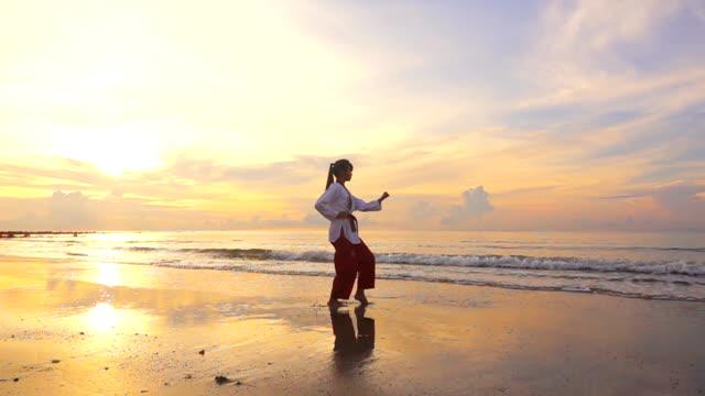 vídeos de stock, filmes e b-roll de hd super slow motion: mulheres jovens practising artes marciais ao ar livre na praia em vez de pôr do sol - artes marciais