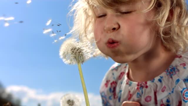 HD Super Slow-Mo: Little Girl Blowing Dandelion Seeds