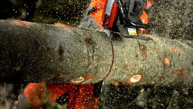 HD Super Slow-Mo: Logger Bucking A Log video