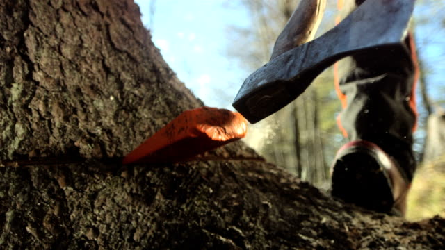 HD Super Slow-Mo: Logger Hitting The Wood Splitting Wedge video