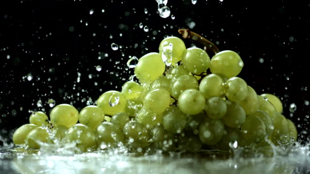 hd super slow-mo: pouring water over grapes - vindruva bildbanksvideor och videomaterial från bakom kulisserna