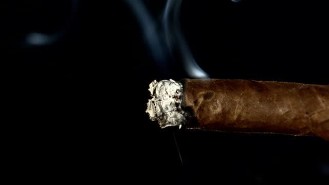 hd super slow-mo: smoking a cigare - puro stok videoları ve detay görüntü çekimi