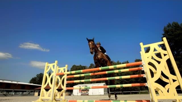 vídeos de stock, filmes e b-roll de super câmera hd-seg: treinamento de pular oxer - cavalgar