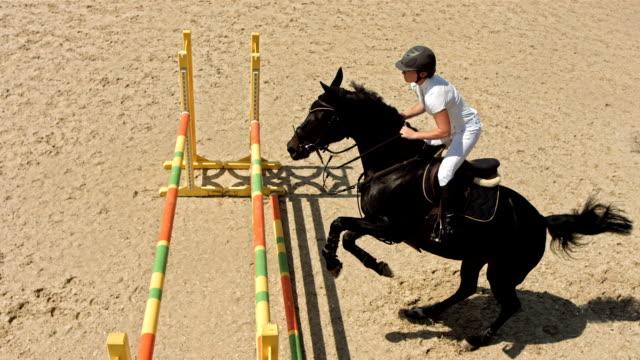 hd super slow-mo: training show jumping classes - hästhoppning bildbanksvideor och videomaterial från bakom kulisserna