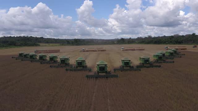 vídeos de stock e filmes b-roll de super soybean harvest - colher atividade agrícola
