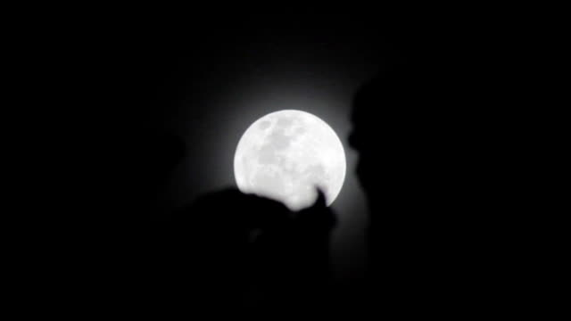 Supermoon Behind The Leaves video